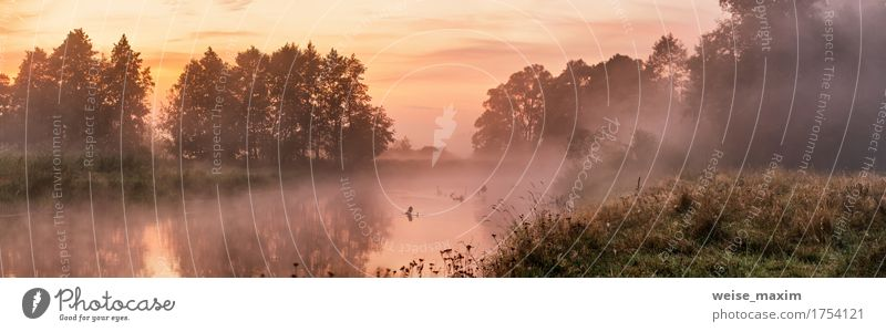 Foggy river in the morning Vacation & Travel Summer Wallpaper Nature Landscape Sky Sunrise Sunset Autumn Tree Forest Lake River Fresh Green White water panorama