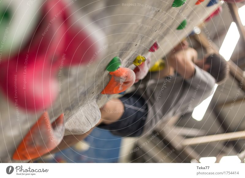 In the Boulderhalle #2 Leisure and hobbies Sports Fitness Sports Training Climbing Mountaineering Human being Hand Wall (barrier) Wall (building) Adventure