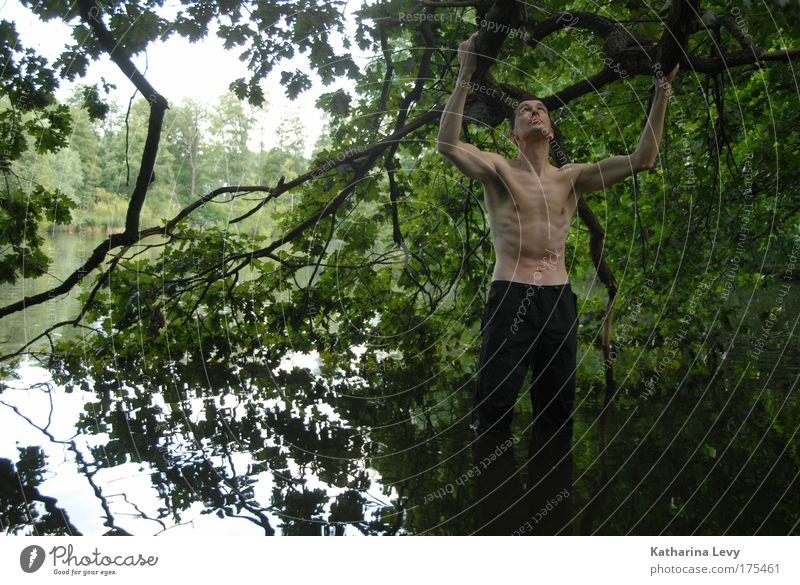 Human being Man Nature Water Tree Summer Loneliness Life Freedom Lake Contentment Wait Adults Masculine Adventure Stand