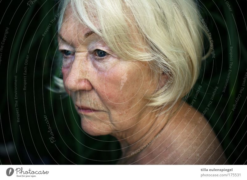 Woman Human being Beautiful Old Calm Senior citizen Loneliness Feminine Moody Authentic Transience Longing Natural Experience Wisdom Patient