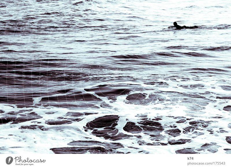 paddle Surfing Ocean Water Waves Mediterranean North Sea Baltic Sea Atlantic Ocean