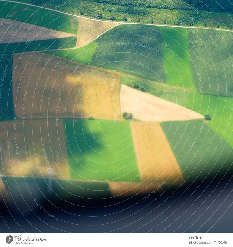 4-field economy Colour photo Exterior shot Aerial photograph Copy Space bottom Day Shadow Bird's-eye view Landscape Summer Grain Grain field Grain harvest Field