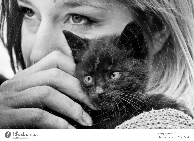 foundling Well-being Contentment Human being Feminine Young woman Youth (Young adults) Eyes 1 Cat Whisker Black Animal Trust Safety (feeling of)