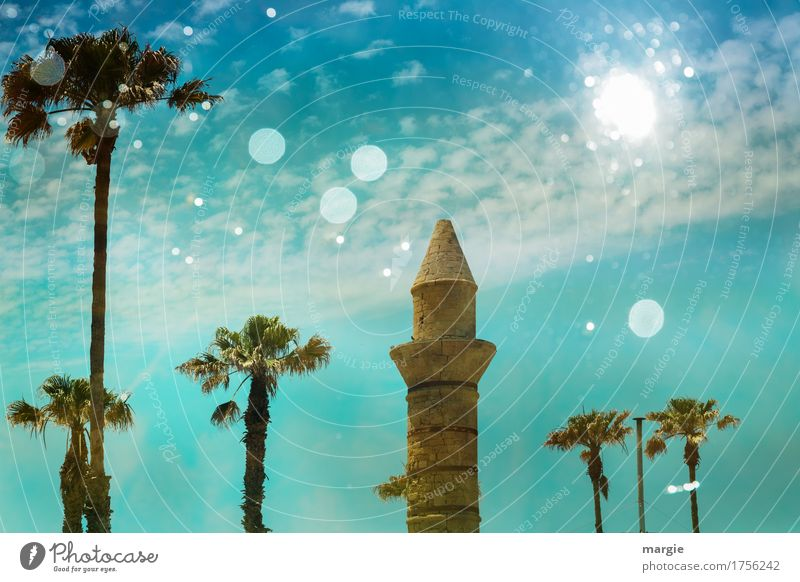 Ancient mosque with palm trees and blue sky Vacation & Travel Tourism Trip Adventure Far-off places Sightseeing Summer Summer vacation Sun Art Culture Tree