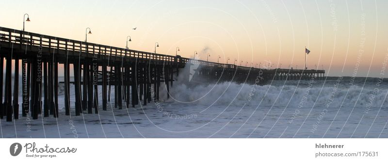 Ocean Wave Storm Pier Colour photo Exterior shot Deserted Morning Sunrise Sunset Motion blur Nature Weather Bad weather Gale Coast Beach Pacific Ocean