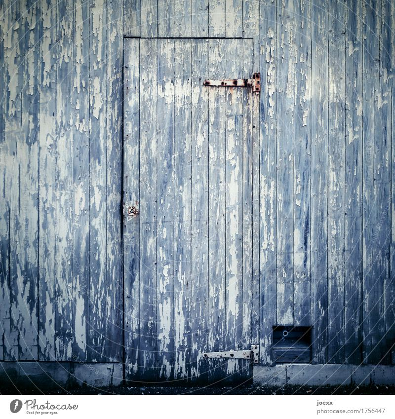 vintage Facade Door Wood Old Gray White Decline Weathered Wooden door Hinge Colour photo Subdued colour Exterior shot Close-up Deserted Day