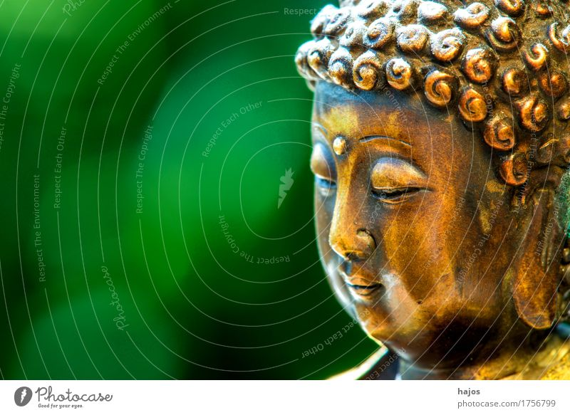 Buddha in Trance Meditation Old Positive Green Goodness Wisdom Religion and faith Know Buddhism Deepen Nirvana background text space Free space understanding