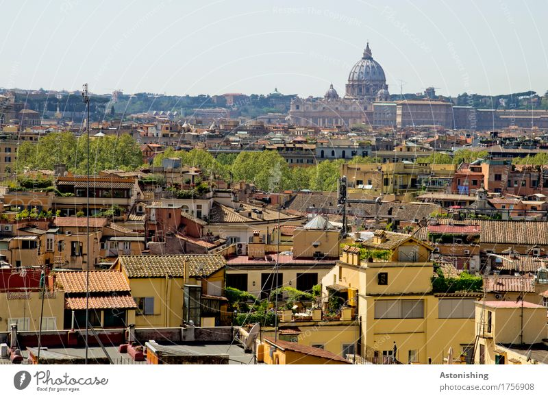 Rome with St Peter's Basilica Environment Nature Sky Horizon Plant Tree Italy Town Capital city Skyline House (Residential Structure) Church Dome Tower