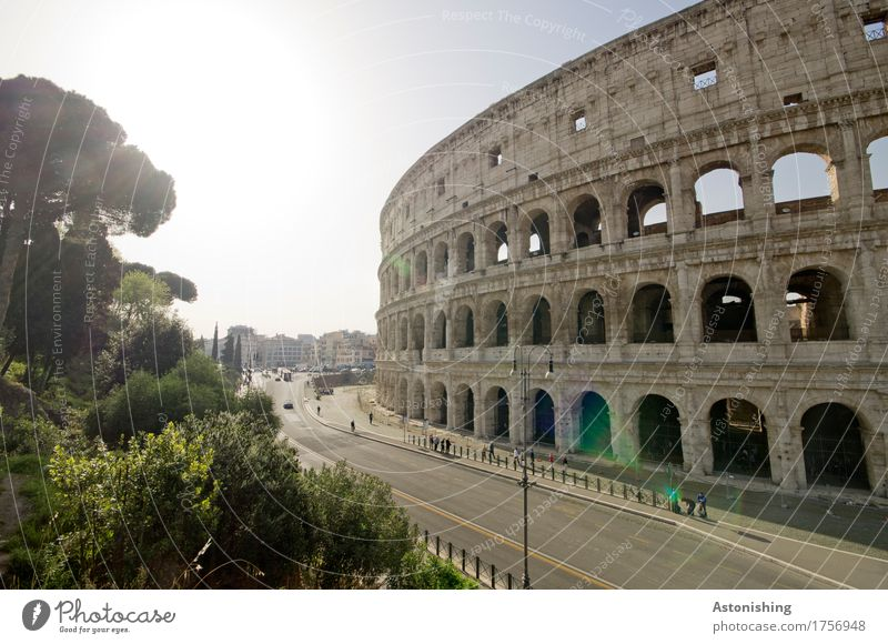 Colosseum Environment Nature Air Sky Clouds Sun Sunlight Spring Weather Plant Tree Bushes Garden Park Rome Italy Town Capital city Gate Manmade structures