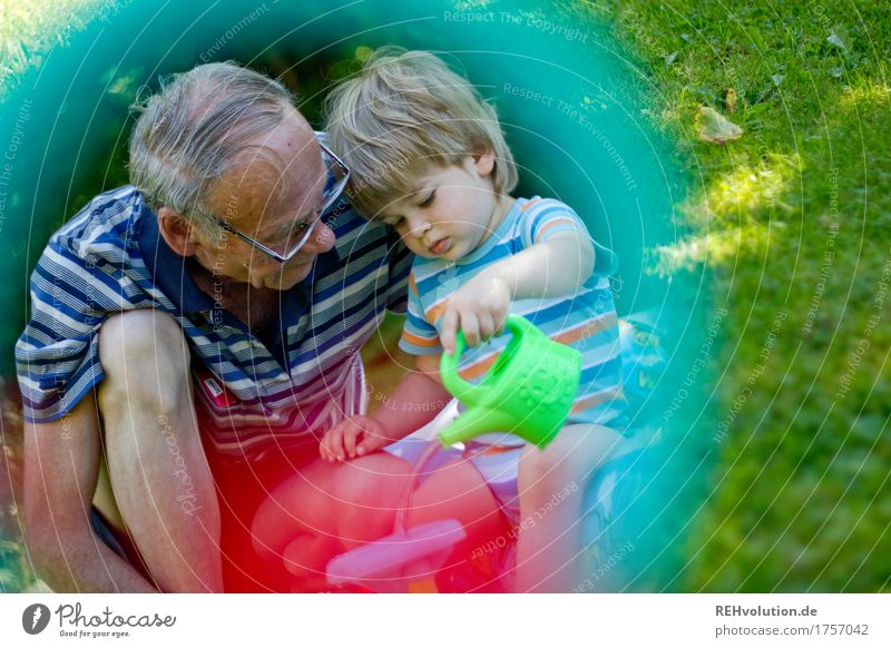 Human being Child Vacation & Travel Summer Joy Senior citizen Meadow Natural Grass Boy (child) Family & Relations Playing Small Happy Garden Together