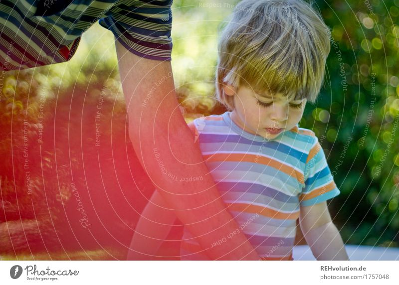concentration in summer Child Toddler Boy (child) Woman Adults Male senior Man Grandfather Family & Relations Infancy Senior citizen Arm 2 Human being