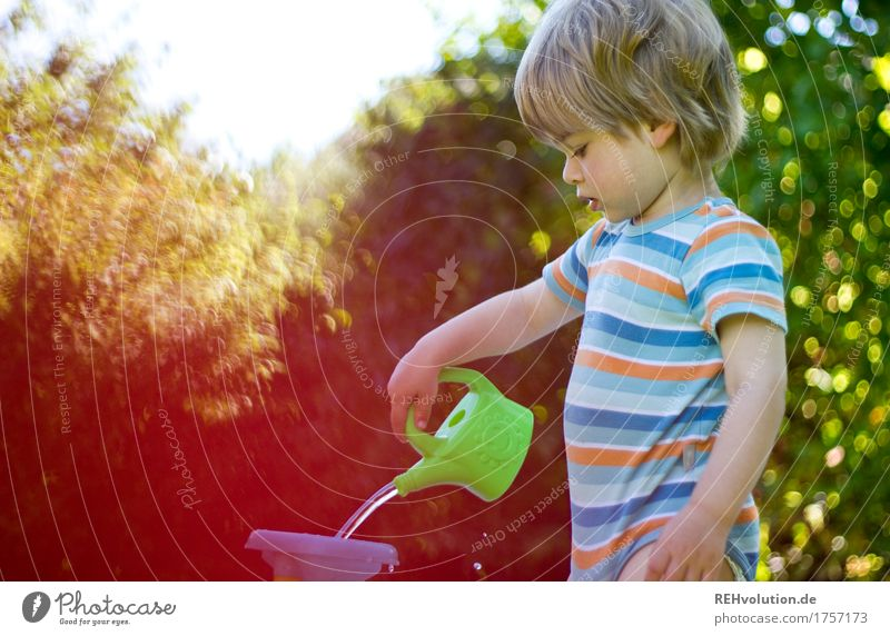 summer job Vacation & Travel Human being Masculine Child Toddler Boy (child) 1 1 - 3 years Environment Nature Garden Watering can Playing Blonde Small Natural