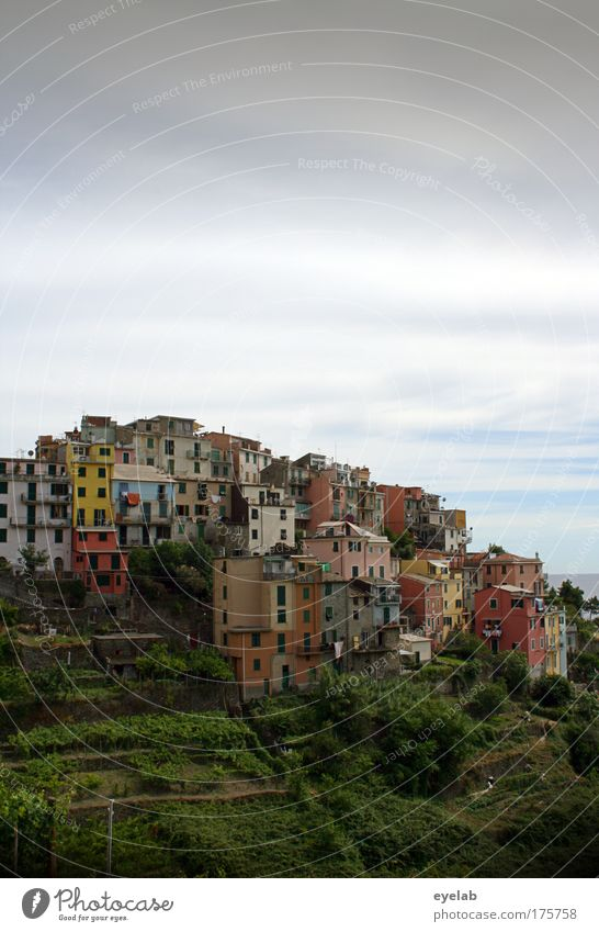 corniglia Colour photo Multicoloured Exterior shot Deserted Copy Space top Copy Space bottom Day Light Central perspective Long shot Panorama (View) Wide angle