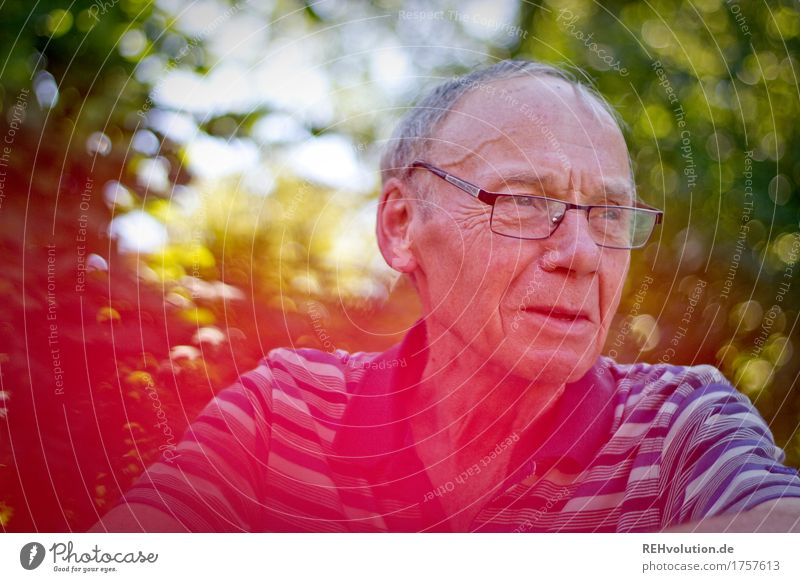 senior in the garden Human being Masculine Man Adults Male senior Grandfather Face 1 60 years and older Senior citizen Environment Nature bushes Eyeglasses