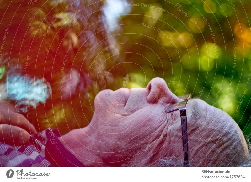 retirement happiness Human being Masculine Man Adults Male senior Grandfather Head Face 1 60 years and older Senior citizen Environment Nature Garden Relaxation