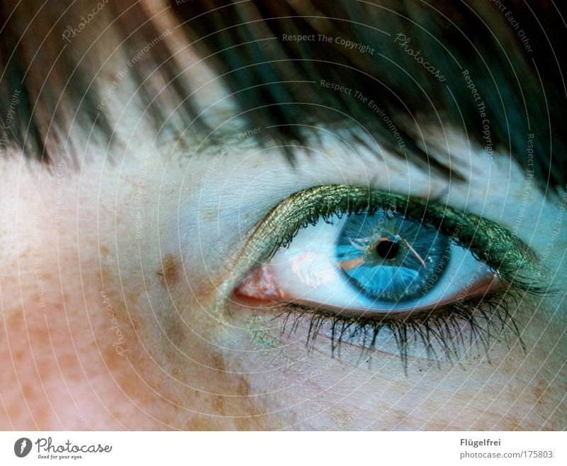 Human being Woman Youth (Young adults) Blue Green Adults Face Eyes Cold Feminine 18 - 30 years Depth of field Cosmetics Make-up Section of image Bangs