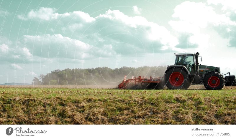 ploughing Grain Nutrition Thanksgiving Profession Farmer Machinery Engines Nature Landscape Sky Clouds Agricultural crop Field Village Tractor Workwear