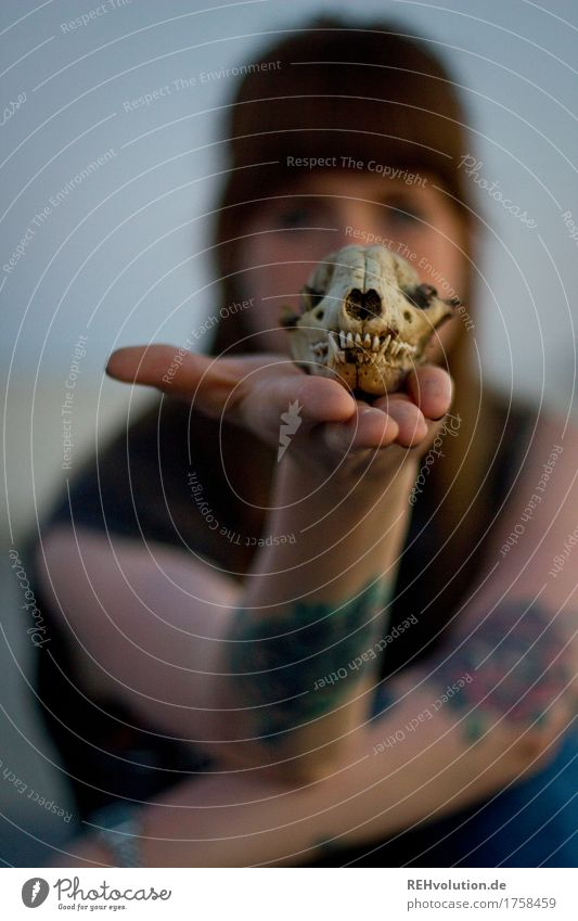 Carina with a skull. Human being Feminine Young woman Youth (Young adults) Face Hand 1 18 - 30 years Adults Tattoo Brunette Long-haired Bangs To hold on