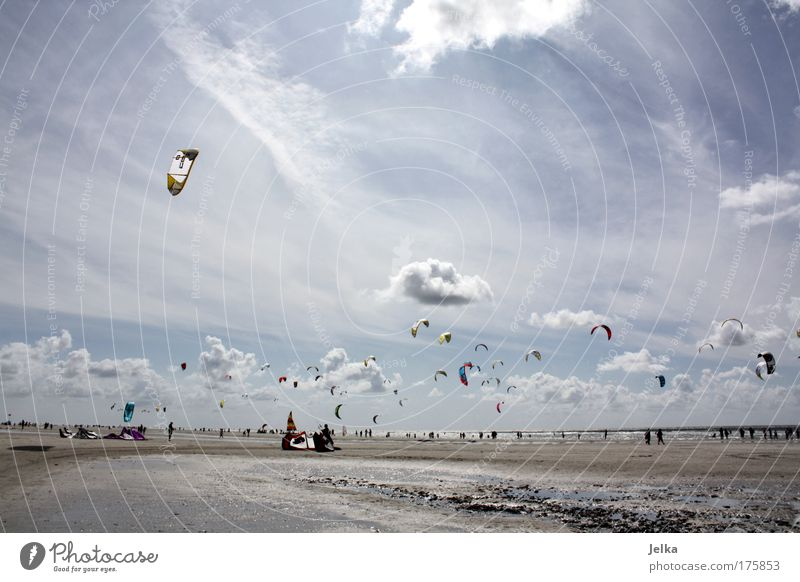 a day in summer Vacation & Travel Sports Aquatics Sporting event Surfing Surfer Kiting Kiter Water Sky Clouds Beautiful weather Coast North Sea Ocean