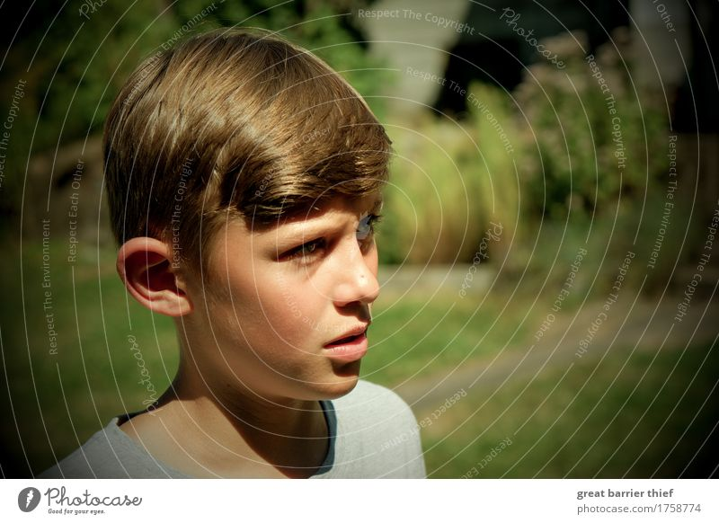 Boy in the garden Human being Masculine Child Boy (child) Brother Family & Relations Infancy Head 1 8 - 13 years Brunette Short-haired Observe Authentic Green