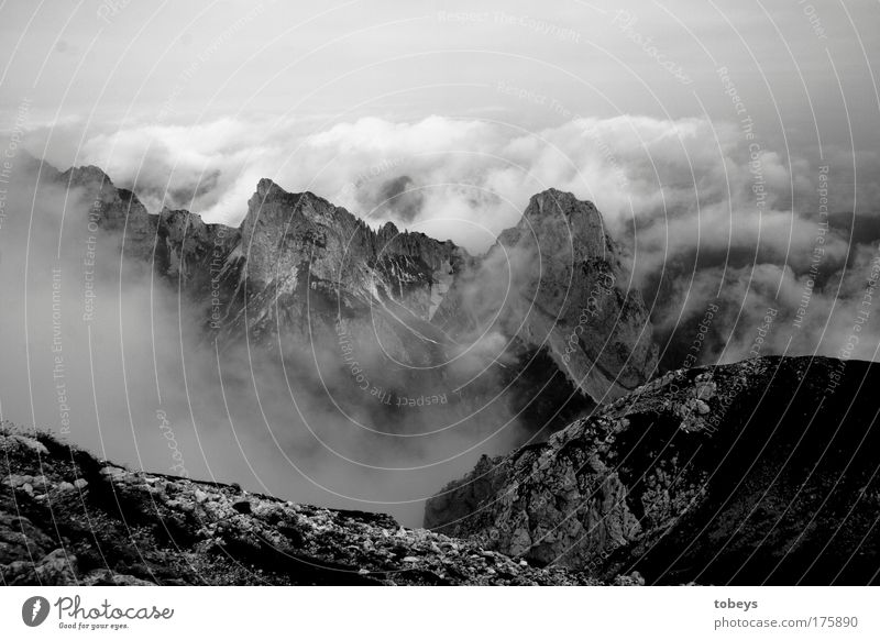 Clouds Mountain Rock Fog Tall Alps Peak Climbing Deep Bavaria God Canyon Mountaineering Valley Glacier Volcano