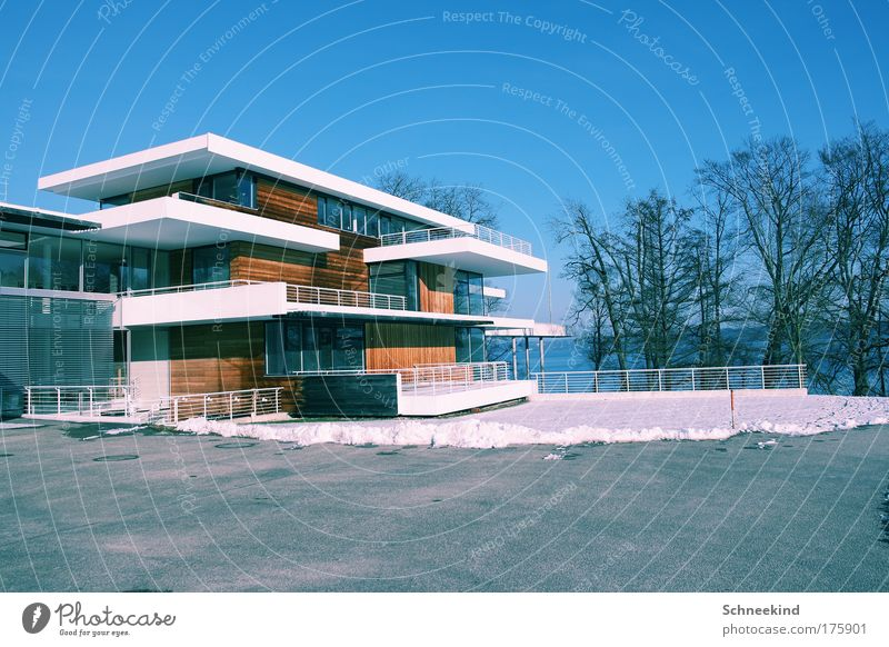 Nature Beautiful Sky Tree Winter House (Residential Structure) Style Garden Lake Landscape Ice Coast Architecture Elegant