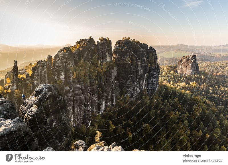 Schrammsteine and Falkenstein in the light of the evening sun Vacation & Travel Tourism Trip Freedom Mountain Hiking Climbing Nature Landscape Autumn