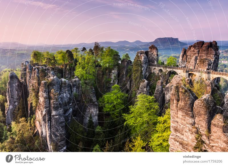 Sky Nature Vacation & Travel Landscape Far-off places Mountain Freedom Stone Rock Tourism Hiking Idyll Vantage point Tourist Attraction National Park Saxony
