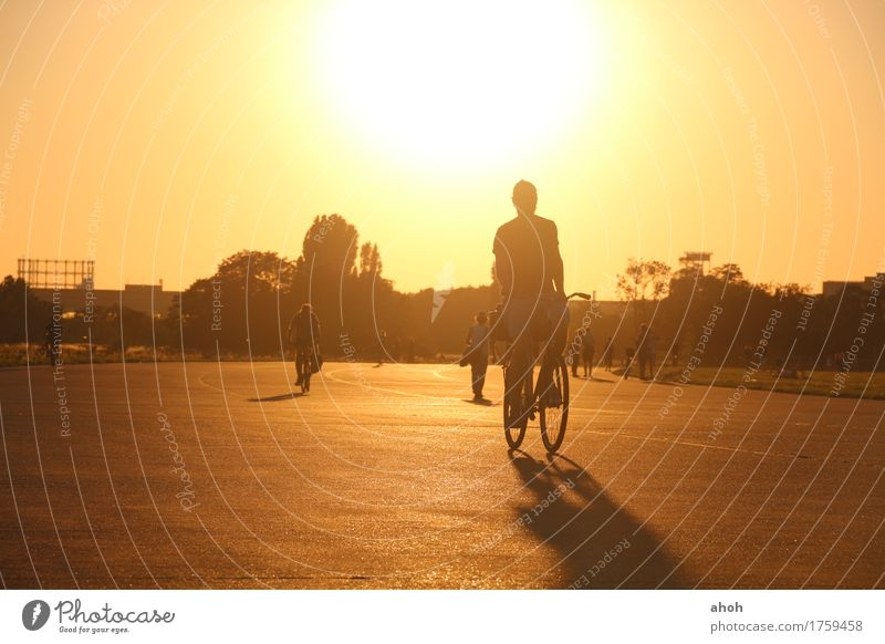 Nature Landscape Meadow Sports Lifestyle Berlin Bright Park Leisure and hobbies Contentment Bicycle Gold To enjoy Cycling Joie de vivre (Vitality) Historic