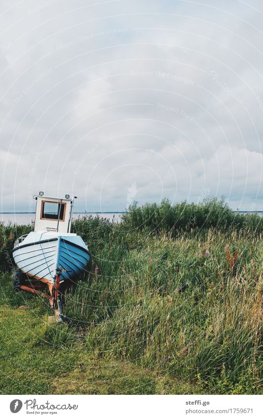 Nature Old Loneliness Dark Cold Coast Watercraft Leisure and hobbies Esthetic Retro Lakeside North Sea Navigation Fishing (Angle) Fishery Maritime