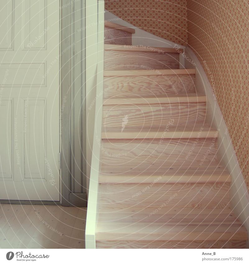 Style Wood Line Bright Room Flat (apartment) Door Design Stairs Simple Living or residing Interior design Wallpaper Upward