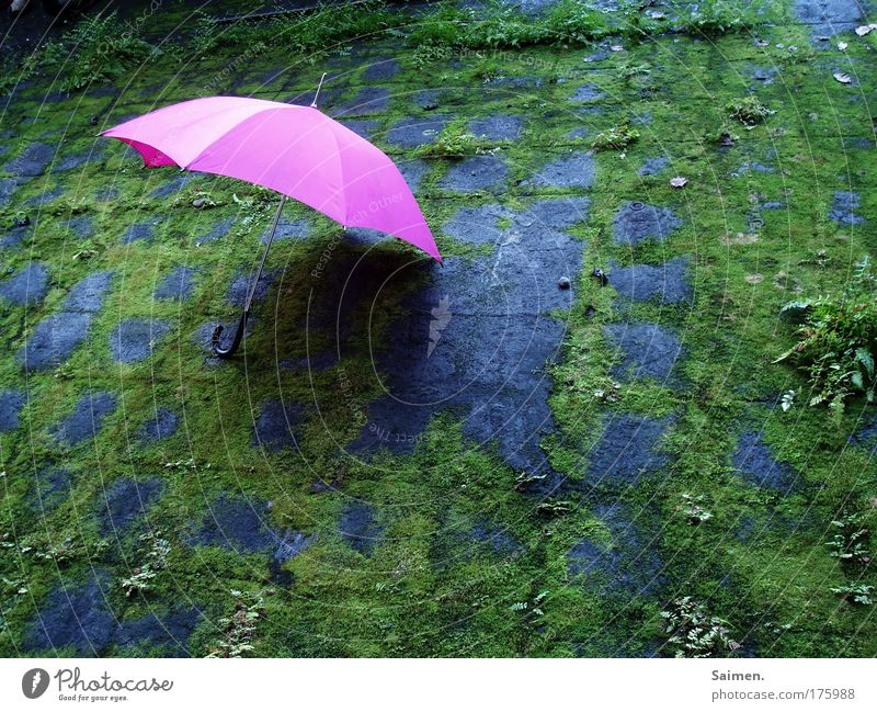 Green Joy Loneliness Colour Weather Contentment Pink Lie Uniqueness Factory Kitsch Idyll Umbrella Foreign Protection Fern