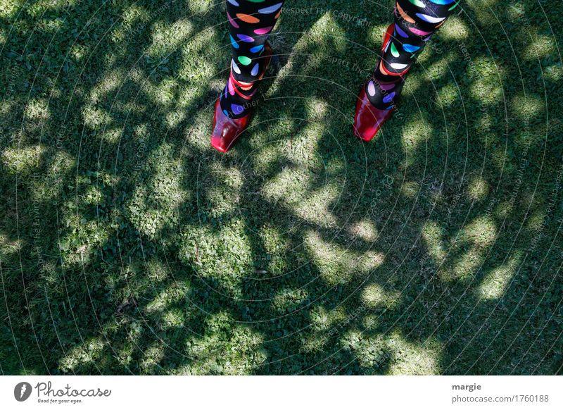 spot landing Feminine Woman Adults Legs Feet 1 Human being Nature Earth Sunlight Summer Plant Tree Foliage plant Meadow Footwear Multicoloured Green Red