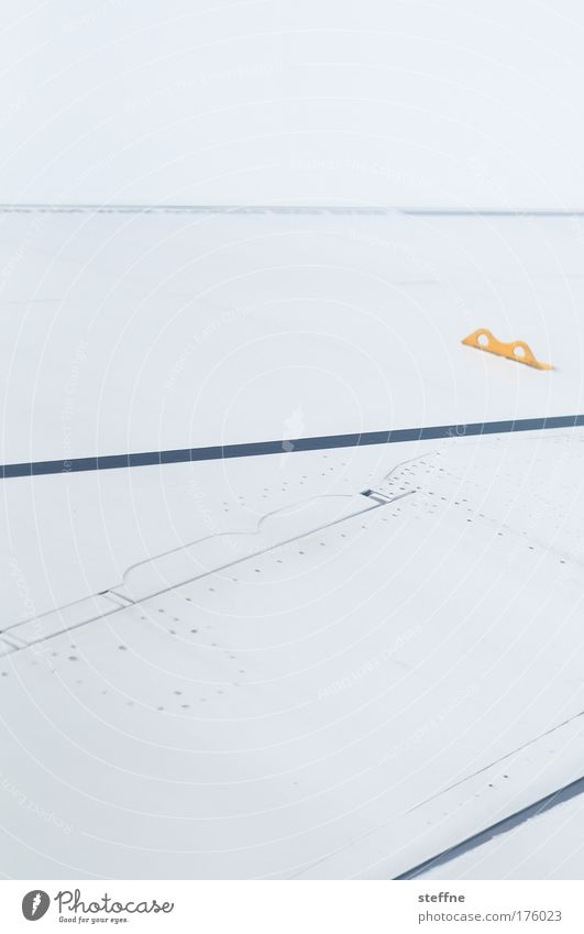 Vacation & Travel Airplane Flying Wing Pilot Passenger plane
