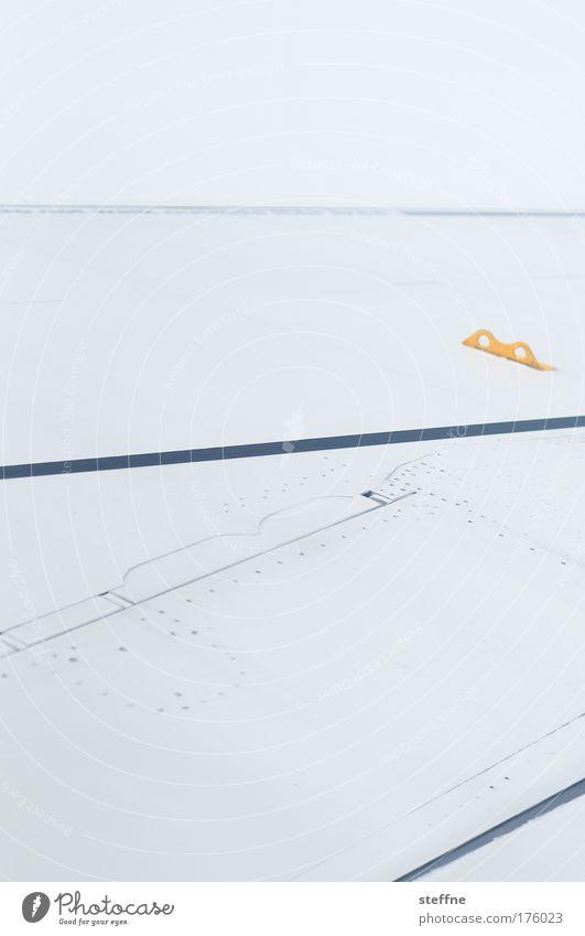 Vacation & Travel Airplane Flying Wing Pilot Passenger plane