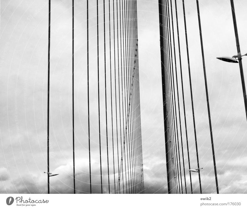 cable-stayed bridge Black & white photo Exterior shot Detail Abstract Pattern Structures and shapes Deserted Copy Space left Day Sky Clouds Climate Weather
