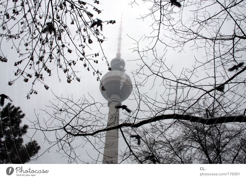 november Nature Landscape Sky Clouds Autumn Bad weather Fog Snow Capital city Tower Building Tourist Attraction Landmark Longing Wanderlust Berlin Germany