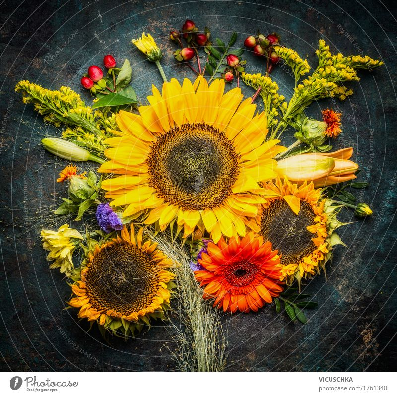 Sunflower bundles with autumnal flowers Style Design Life Summer Nature Plant Autumn Flower Leaf Blossom Decoration Bouquet Yellow Composing Rustic Beautiful