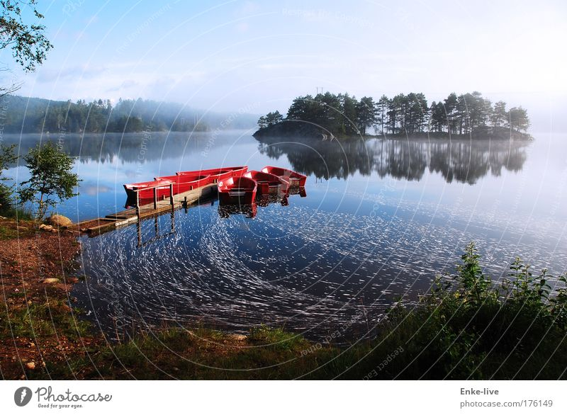 Nature Water Vacation & Travel Red Loneliness Relaxation Environment Landscape Lake Moody Swimming & Bathing Fog Leisure and hobbies Elegant Island Adventure