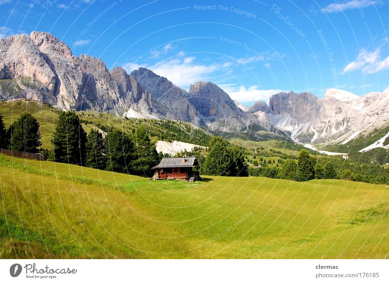 cisles alm Colour photo Exterior shot Day Forward Vacation & Travel Tourism Freedom Summer Summer vacation Sun Mountain Hiking Grass