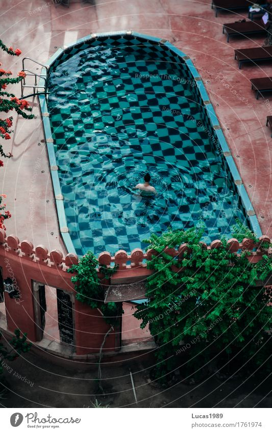 pool Luxury Elegant Wellness Vacation & Travel Tourism Trip Far-off places Freedom Living or residing Dream house Swimming & Bathing Swimming pool Human being