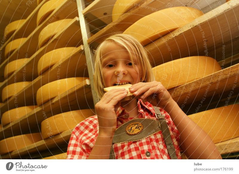 Child Girl Food Eating Healthy Infancy Blonde Tourism Teeth Alps Overweight Mouth Cheese Nutrition Cellar Vegetarian diet