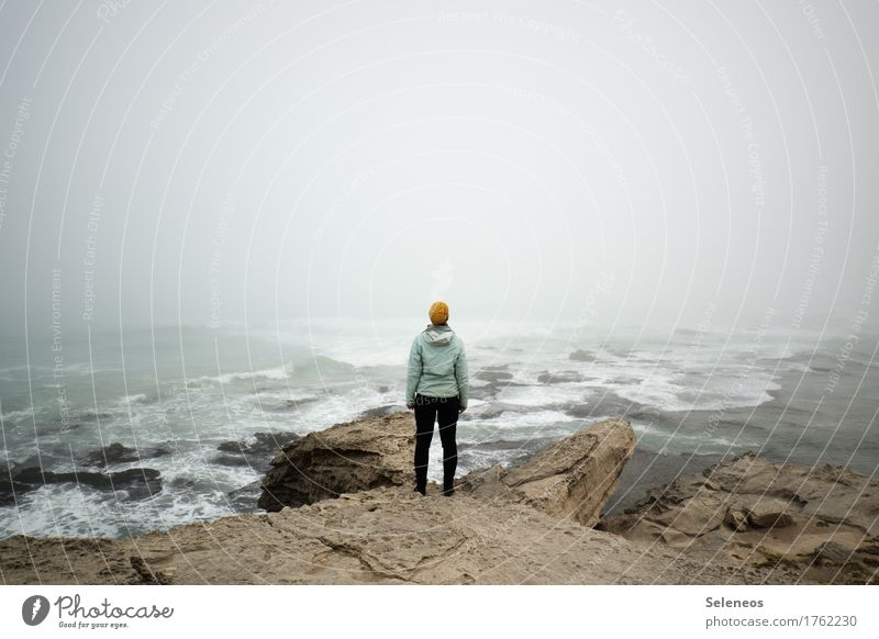 Human being Nature Vacation & Travel Landscape Ocean Far-off places Beach Environment Autumn Coast Freedom Rock Tourism Fog Waves Trip