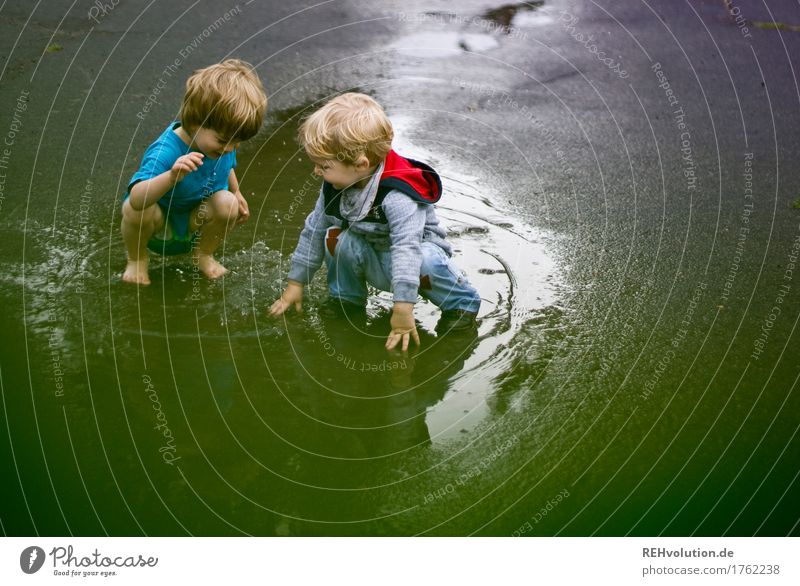 Human being Child Summer Green Water Joy Boy (child) Playing Family & Relations Small Happy Swimming & Bathing Together Friendship Masculine Weather