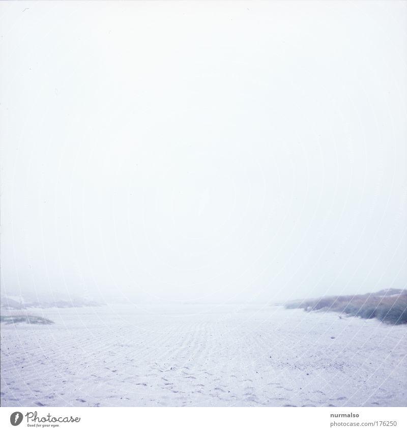 Nature Ocean Winter Beach Vacation & Travel Gray Sadness Sand Landscape Moody Coast Art Fog Walking Drops of water
