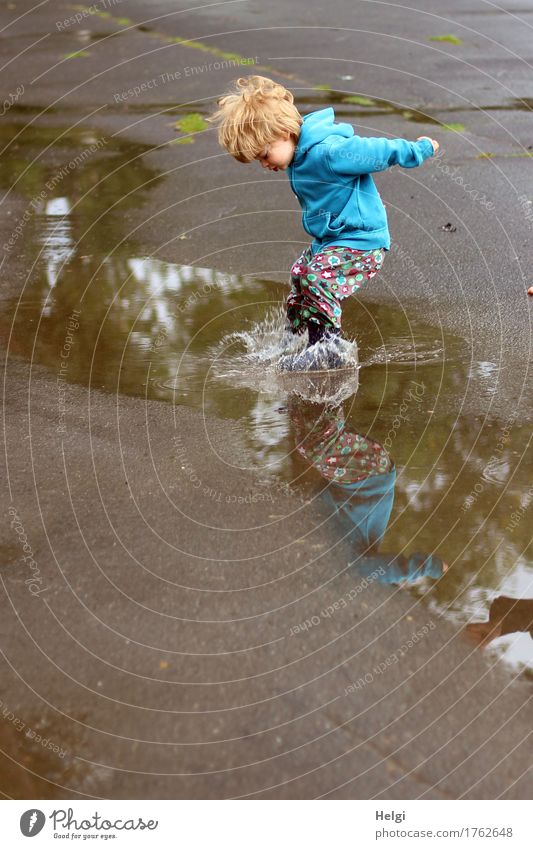 little boy with colorful pants and blue jacket has fun and jumps swinging into a puddle Human being Feminine Toddler Infancy 1 1 - 3 years Environment Water