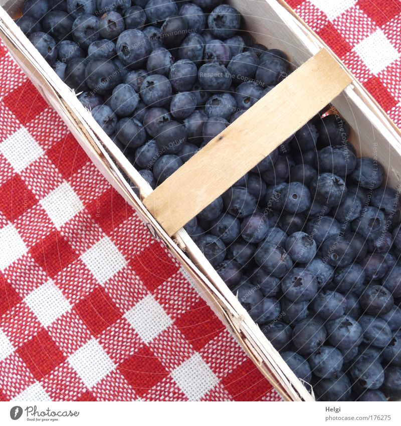 Blueberries in a chip basket on a red and white chequered tablecloth Colour photo Multicoloured Exterior shot Detail Deserted Day Bird's-eye view Food Fruit