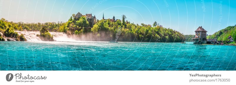 The Rhine Fall on a sunny day Joy Beautiful Relaxation Vacation & Travel Tourism Summer Entertainment Nature Landscape Beautiful weather Tree River Waterfall
