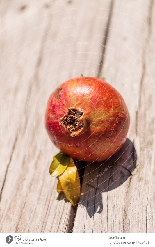 Red pomegranate fruit Punica granatum Food Fruit Dessert Nutrition Eating Breakfast Organic produce Vegetarian diet Diet Plant Tree Leaf Brown Green Pink