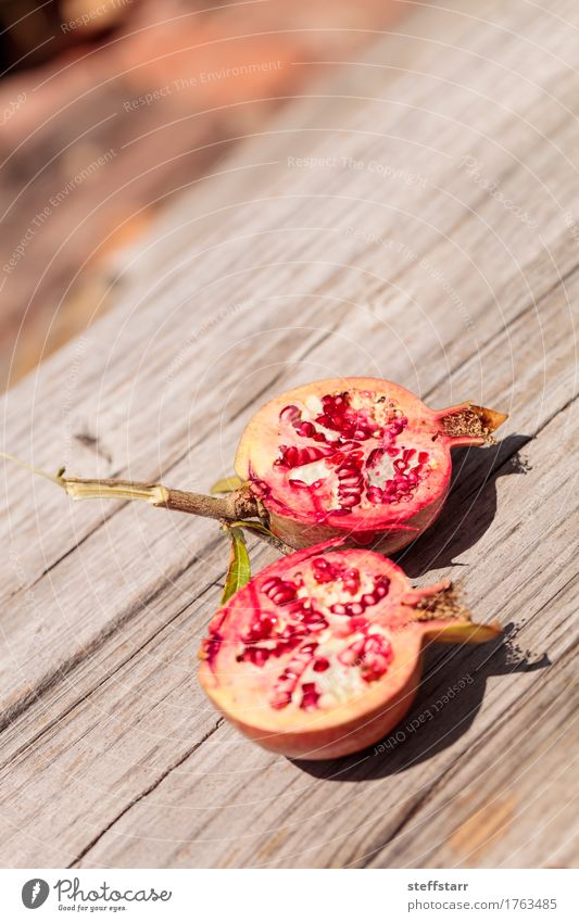 Fresh red pomegranate fruit Punica granatum Nature Plant Green Beautiful Tree Red Leaf Life Eating Lifestyle Healthy Garden Food Brown Pink Fruit